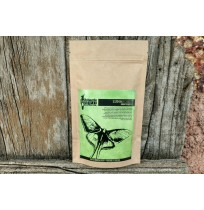 Filter Coffee (No Chicory) - Luna Roast