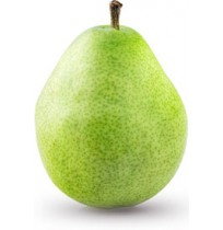 Kashmir Pear (Smaller Sized)