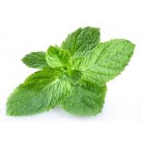Pudhina (Mint)1 Bunch