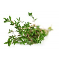 Thyme Fresh (50g packed in a plastic ziplock)